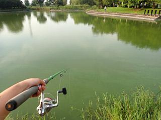 用水路を諦めて池にきたが、こちらも無反応。
