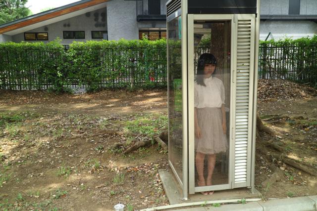 この電話ボックスは「C型ボックス」と呼ばれるタイプのもの