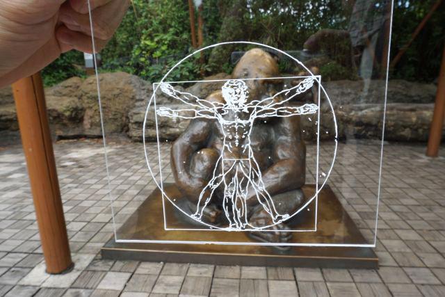 ウィトルウィウス的人体図も重ねてみた。