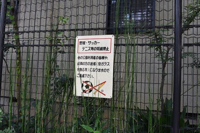 野球、サッカー禁止の是非はよく議論されるところだが、カツオがひとんちの窓ガラスを割っていた時代からそもそも禁止だった気もする