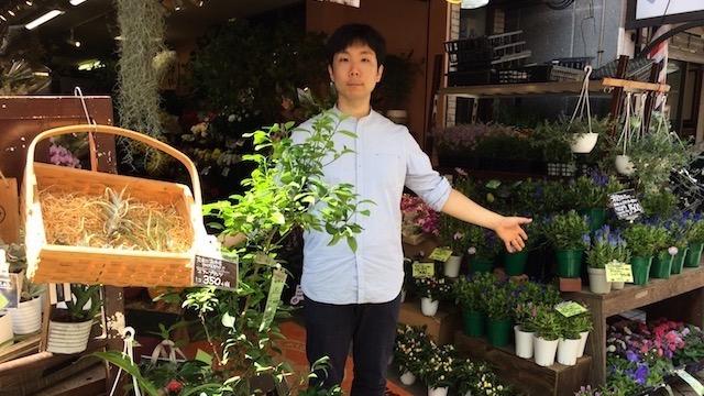 上田さんが働く高円寺の花屋