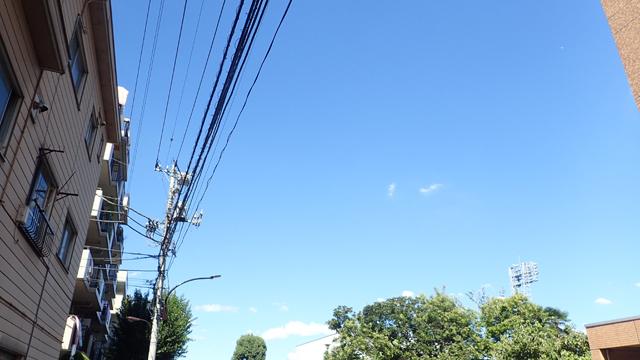 台風一過ってつい言いたくなる天気に晴れ上がった