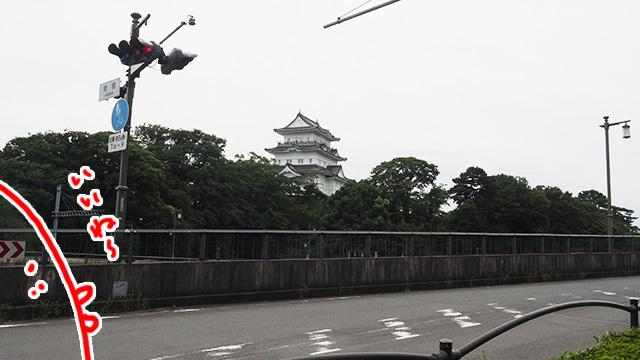 駅から割と近いところにある小田原城。城があるまちってなんか良いよね。