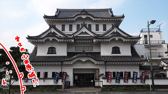 知らない人はこれが小田原城かと勘違いしそう。