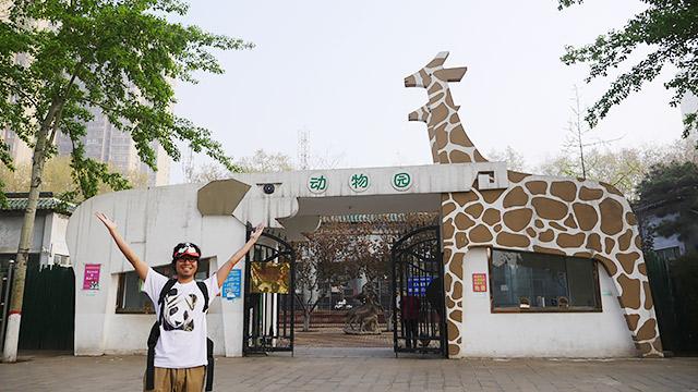 安陽の動物園です!!!