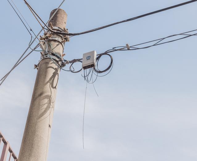 このぐるっと巻いてある部分のこと。「巻きだめからのびた部分が風に揺れているのもきゅんとします。あと電柱にその影がおちているのもいい」とのこと。