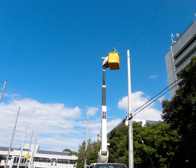 電柱に登るのは夢だったが、実際上がってみるとすごく怖い! こんな状態で作業してるなんてすごい。
