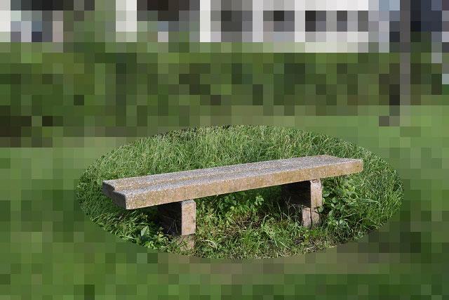 ネコおらずベンチになってしまっていた