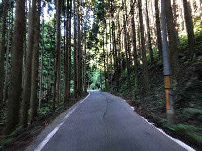 京都に着くなり軽トラへ乗り込み、気づけば薄暗い峠道へ。Hさん、運転荒くてびっくり。