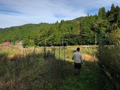 戦場となるHさんの畑。京都市内なのだが、圧倒的にのどかだ。