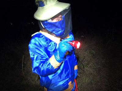 昆虫は赤い光への反応が鈍いので、警戒されぬよう赤セロファンをライトにかぶせてみる。