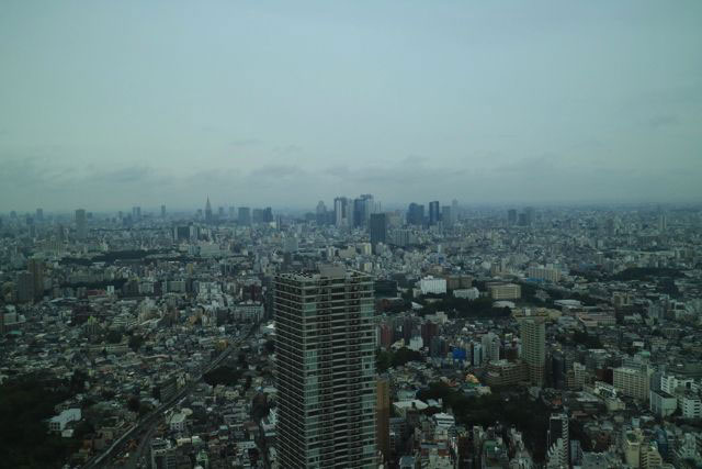 サンシャイン60は地上高239.7メートルあり、完成当時はアジア1位だったこともある。この日は天気が悪いのが残念であった。