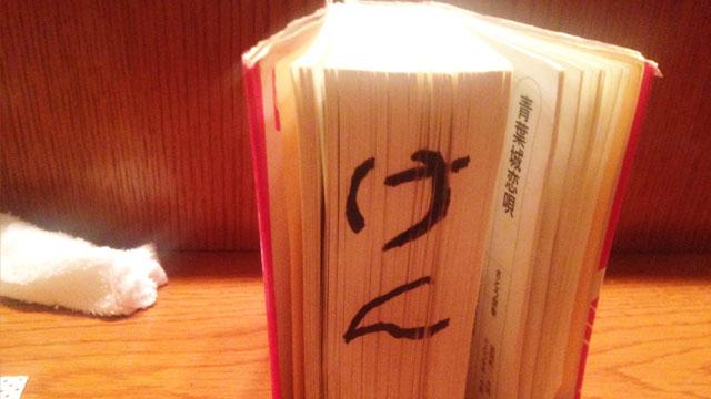 ケンちゃん専用の歌本がひらのにはある