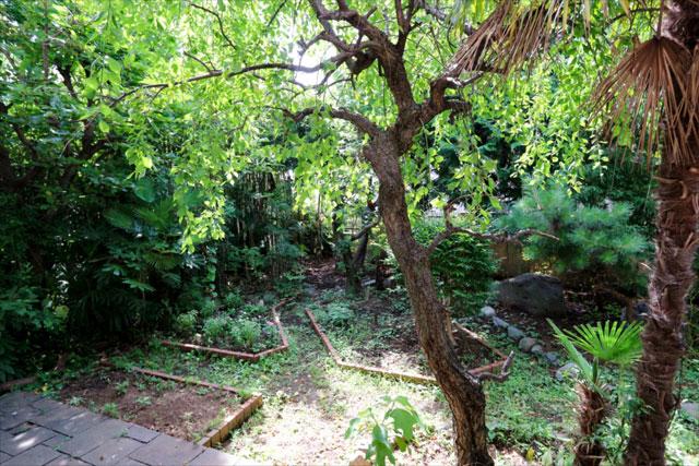 住宅地とは思えないほどの緑豊かな庭が広がる
