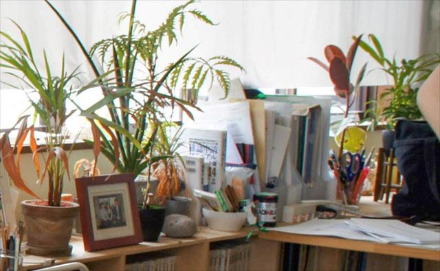 事務所内には観葉植物などが飾られている