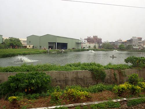 台湾で見かけたサバヒーの養殖用と思われる池。