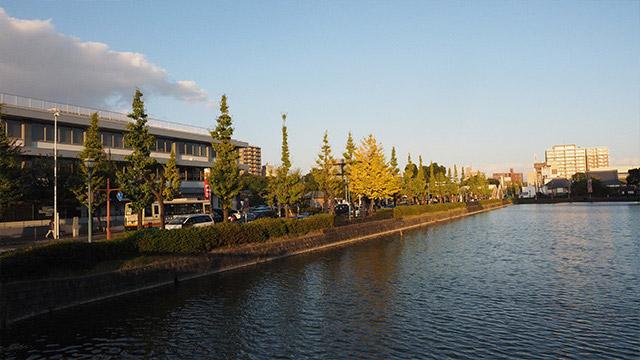 佐賀市は全体的にイチョウ並木が続いていて、秋が似合うまちだ。