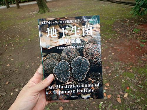 誠文堂新光社の『地下生菌識別図鑑』。