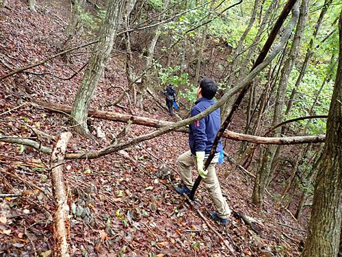 斜度45度の林でキノコ探しをする元気な方々。