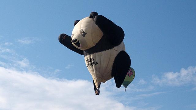 なかには20年もののパンダバルーンも。なんでもゴビ砂漠や万里の長城など、世界各地を飛んでいる猛者らしい。
