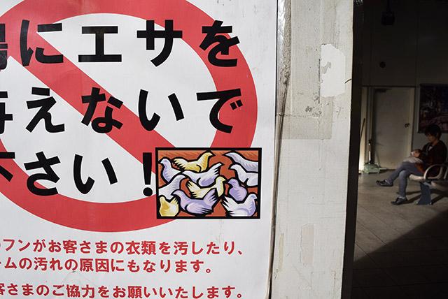 「鳩にエサを与えないで下さい!」というポスターの中のハトの絵のタッチ。
