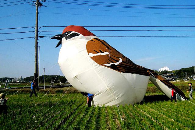 この巨大スズメが東京の住宅街に!どうなる縮尺!(愛知での展示にて 杉浦さん提供)