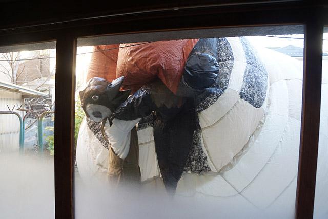 室内から。なんか、いきってる大スズメさんを小スズメさんがなだめてるようにも見える。