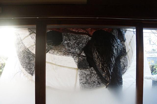 たまたま曇りガラスとあいまって幻想的に。でもムギュゥ~。