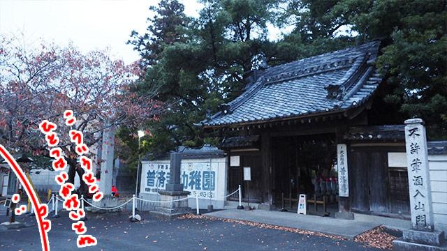 やはり日本の旅に寺社仏閣は欠かせない