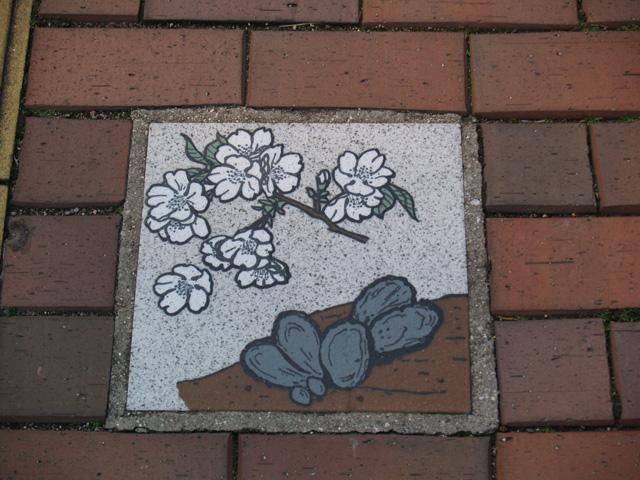 ふと下を見れば、桜に牡蠣。