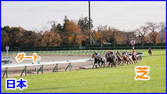 日本の競馬場は芝とダートがある