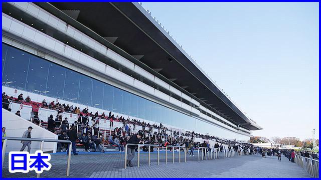 日本の競馬場