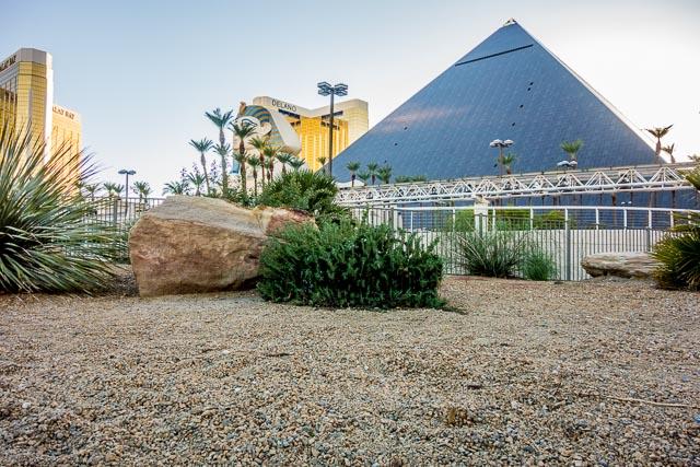 ほっとけば砂漠になる土地柄で、わざわざ砂漠を再現。このシミュラークルはいったい何なのだ。頭を抱えた。