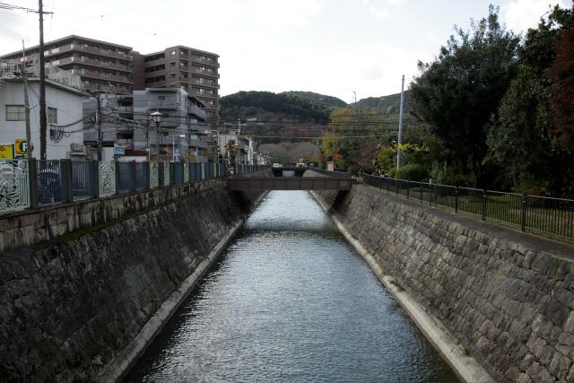 取水口から石積みの水路を辿っていくと――