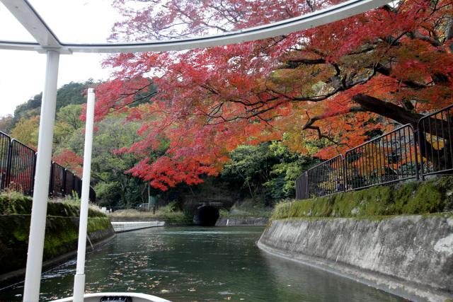 紅葉を眺めていると、やがて四ノ宮船溜まりに到着した