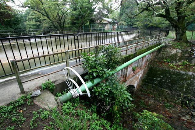 以前に琵琶湖疏水を歩いた時は事前情報がなく、川の交差点に驚いたものだ