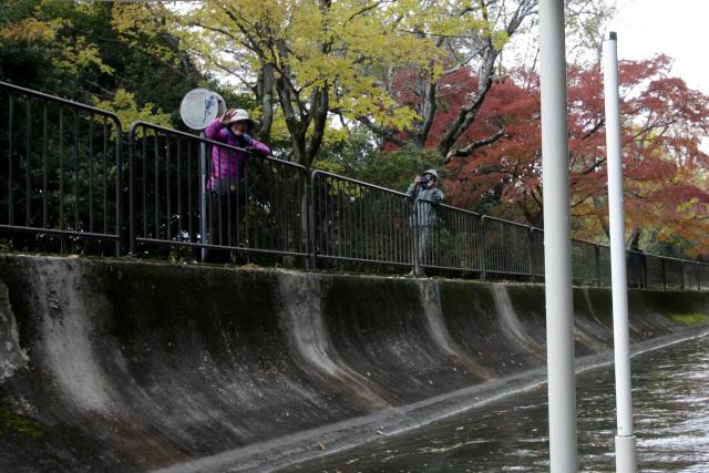 ボートは疏水沿いを歩く人々から注目の的だ