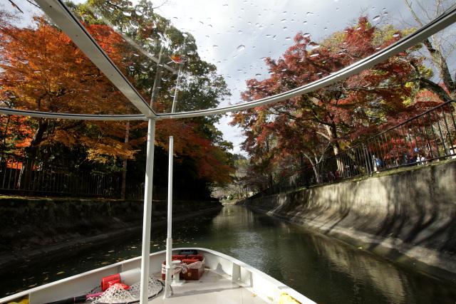 引き続き、紅葉を楽しみながら疏水を下っていく