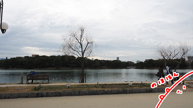 スタバ辺りからの景色が人気。
