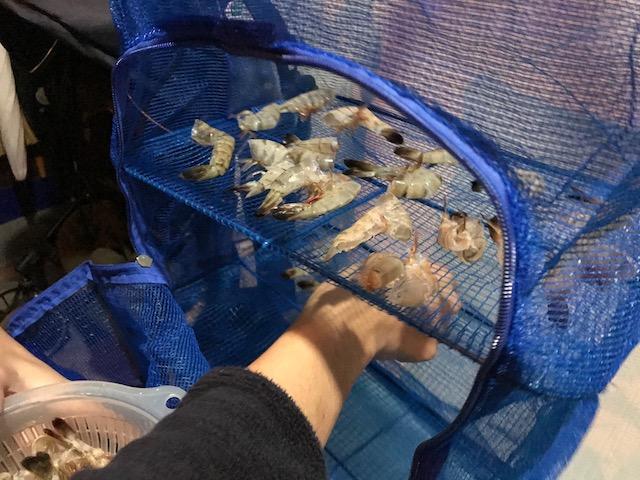 集まった殻は、干物ネットにのせて乾かす。