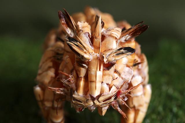 耳や目はエビの尾で作った。ヒゲはエビの足で再現している。