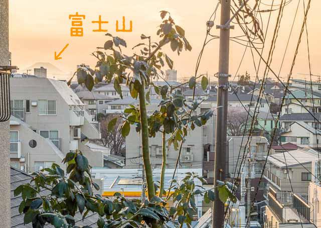 登りきってふり返ると、富士山が見えた。富士山が見えるととりあえず達成感が得られるのでいい。富士山、べんり。