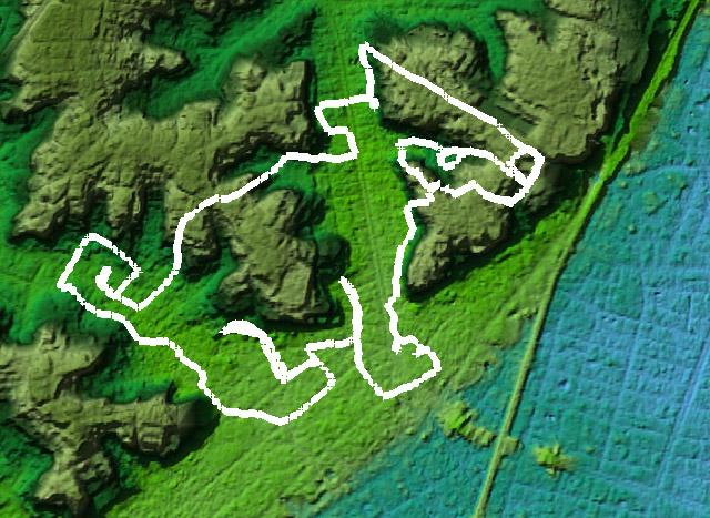 地形図で子犬を見ると、背中および顔の彫りが深いことが分かる。のどの部分、確かに崖を登っている(Google earthで国土地理院長の基盤地図情報データを「東京地形地図」によって表示)