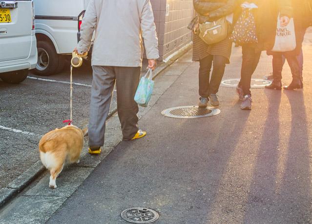 「犬を連れてこのコースを歩いたら面白いんじゃないか」というアイディアをいただいた。それやりたい。