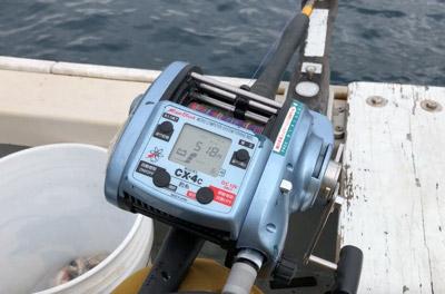 水深500mくらいで釣りをしてると、釣り糸に変なものがくっついてくる。