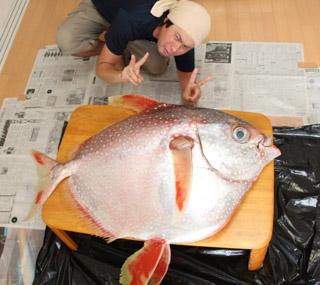 例えばアカマンボウという深海魚もマグロの代用魚にされるとかされないとか…。こういう例って実はいっぱいあるんだよね。