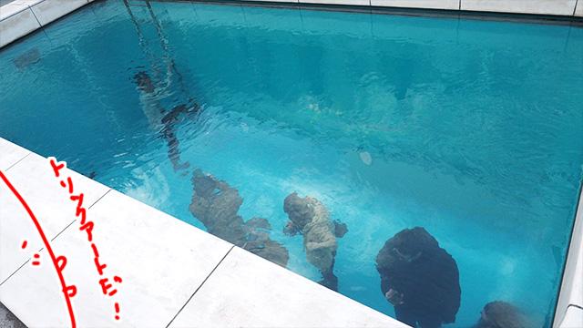 プールに入っているように見える仕掛けも大人気。