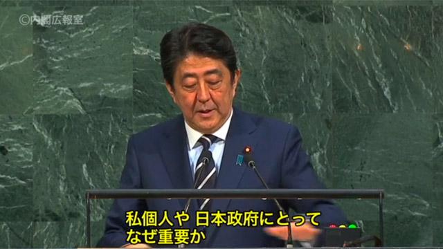 国連でスピーチをする安倍総理。後ろが見事な蛇紋岩・政府インターネットテレビ</a>より