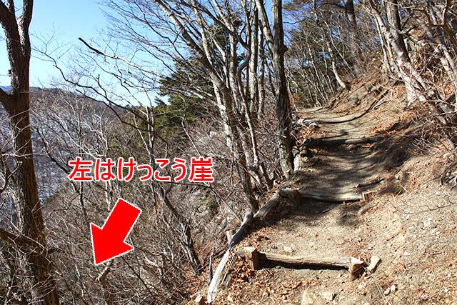 普通に登山道で、左側に落ちたら死ぬかもって感じです。