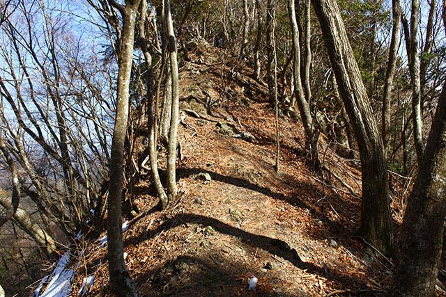 写真では伝わりにくいけど、細い尾根の両側が崖。落ちたら死ねる。